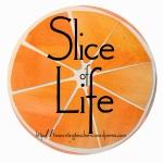 slice of life 2016